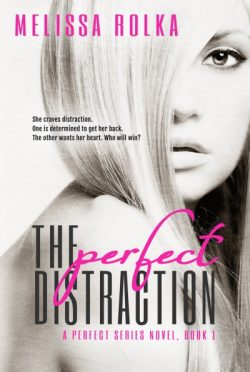 New Cover Reveal: The Perfect Distraction (Perfect #1) by Melissa Rolka