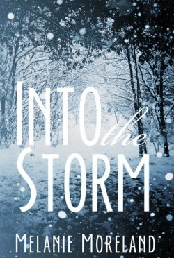 Cover Reveal : Into the Storm by Melanie Moreland
