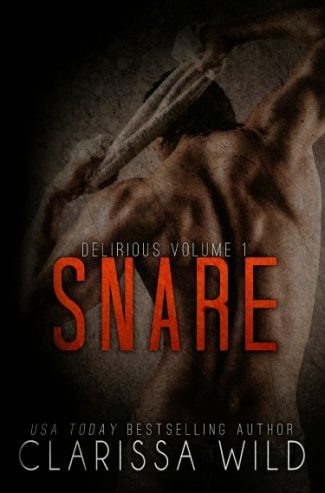 Cover Reveals & Giveaway: Seek & Snare (Delirious #1-2) by Clarissa Wild