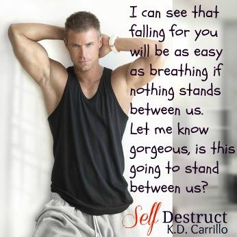 Self Destruct teaser 2