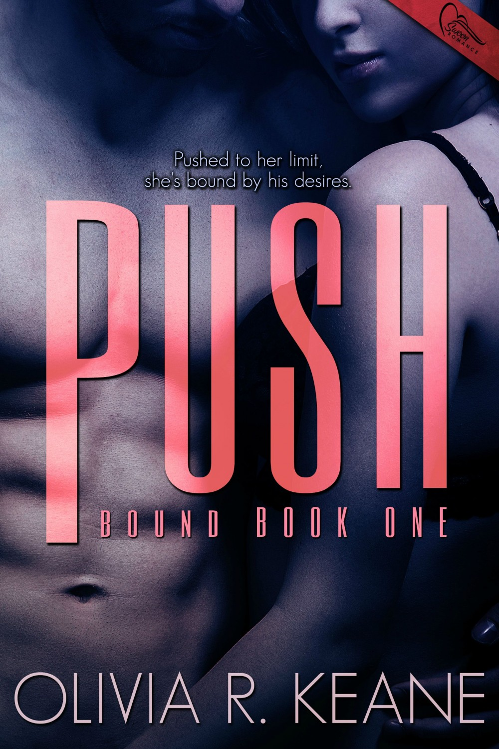Push Ebook Cover