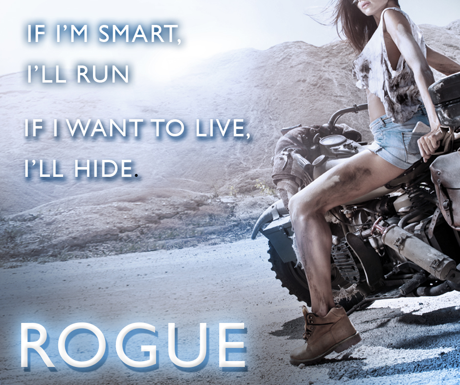 RUN HIDE TEASER ROGUE