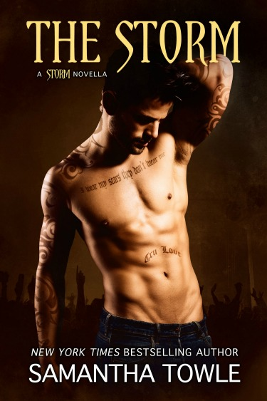 Cover Reveal & Giveaway: The Storm (The Storm #3.5) by Samantha Towle
