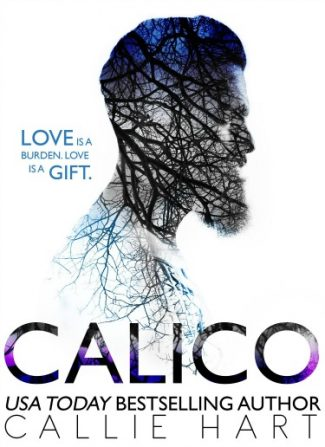Cover Reveal: Calico by Callie Hart