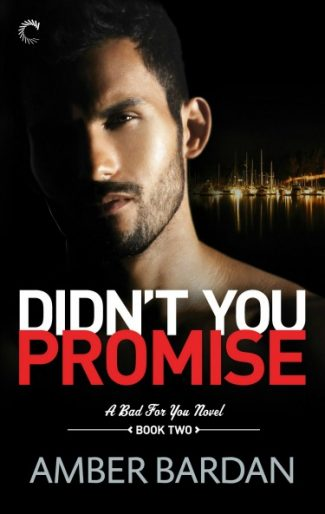 Release Day Blitz + Giveaway: Didn't You Promise? (Bad for You #2) by Amber A Bardan