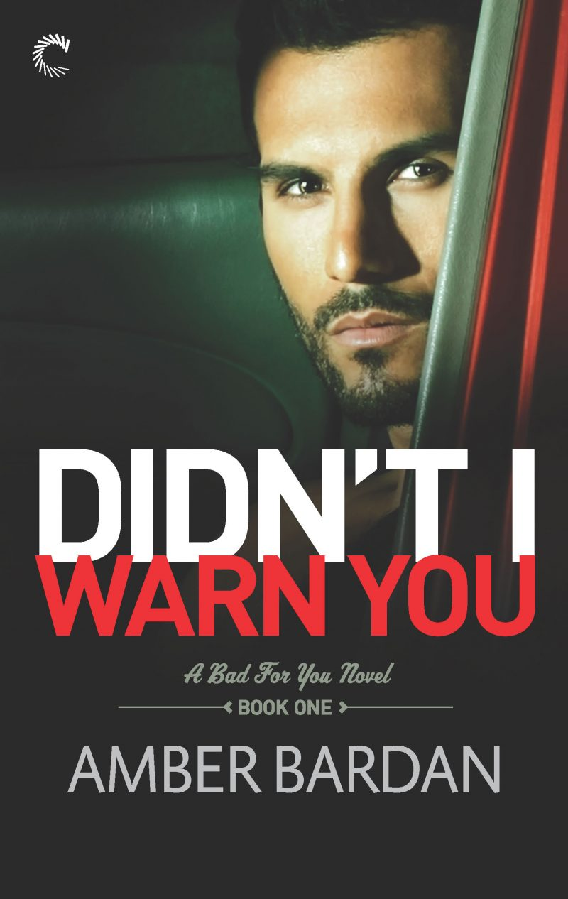 Didn't I Warn You Ebook Cover