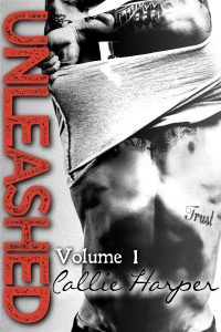 Unleashed Volume 1 Cover
