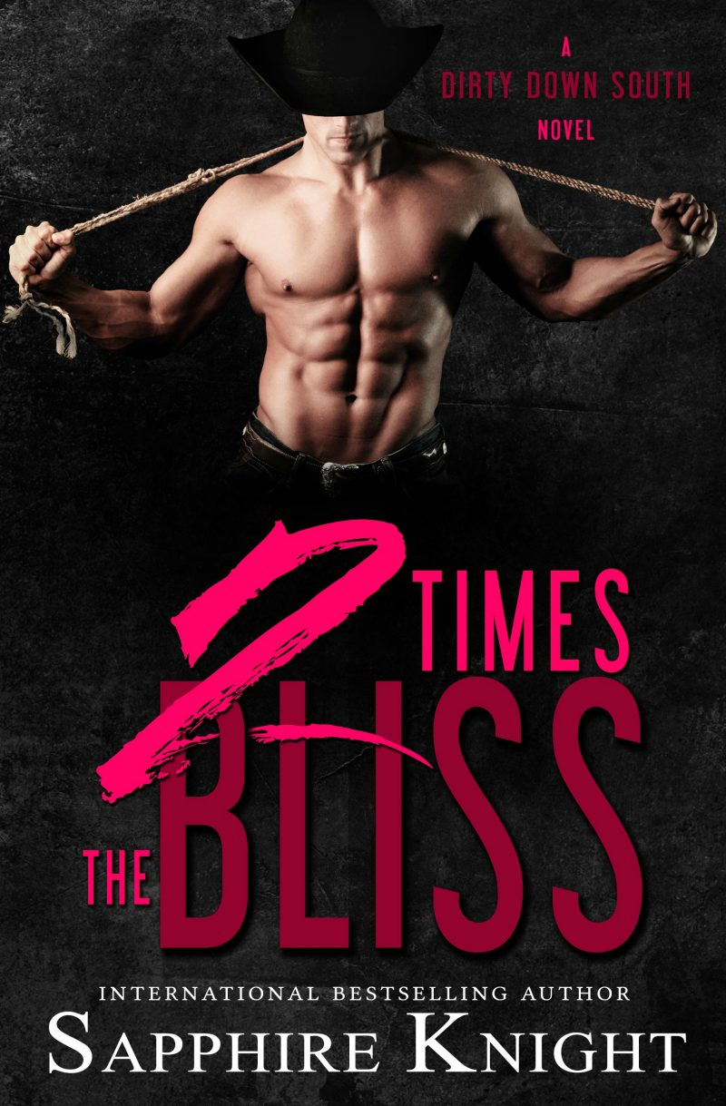 2 Times the Bliss Ebook Cover