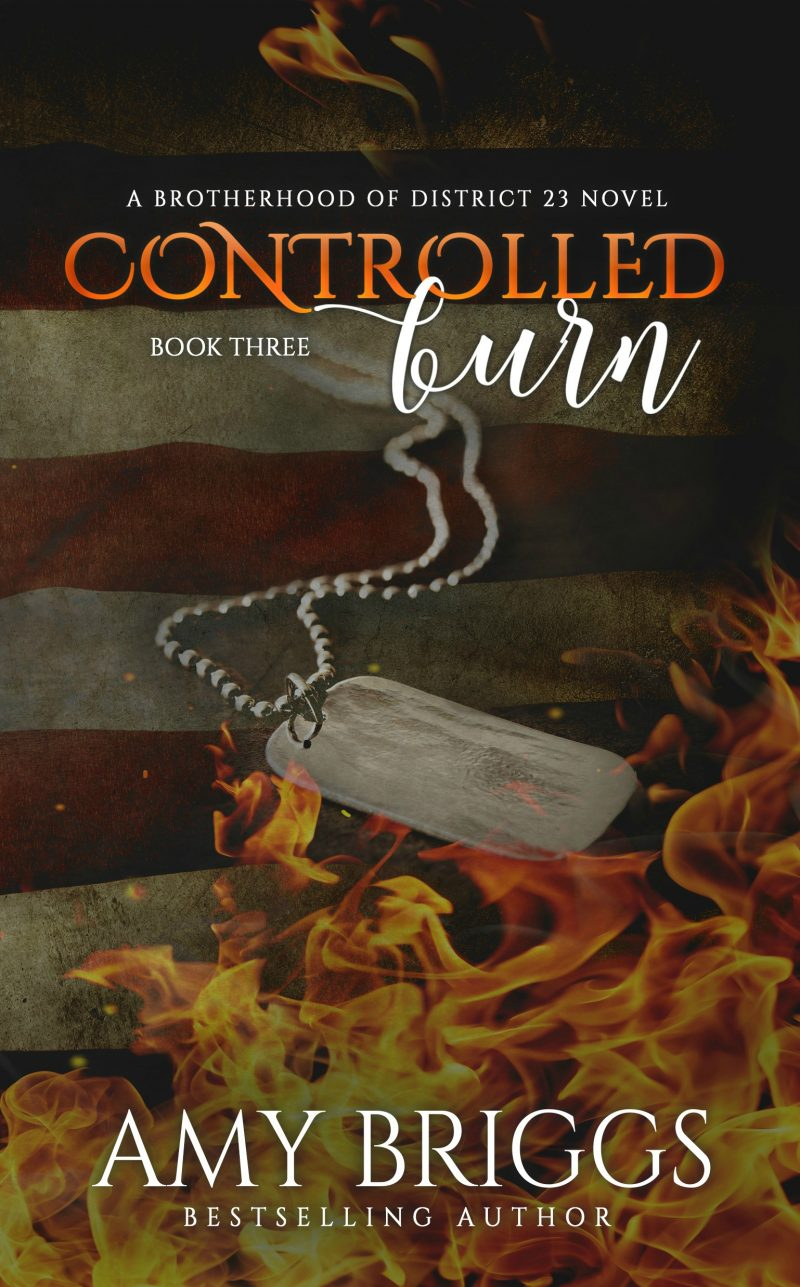 controlled-burn-ebook-cover