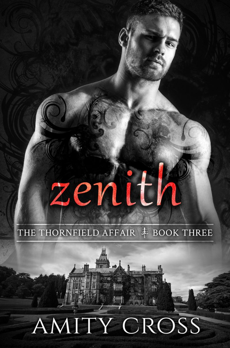 zenith-ebook-cover