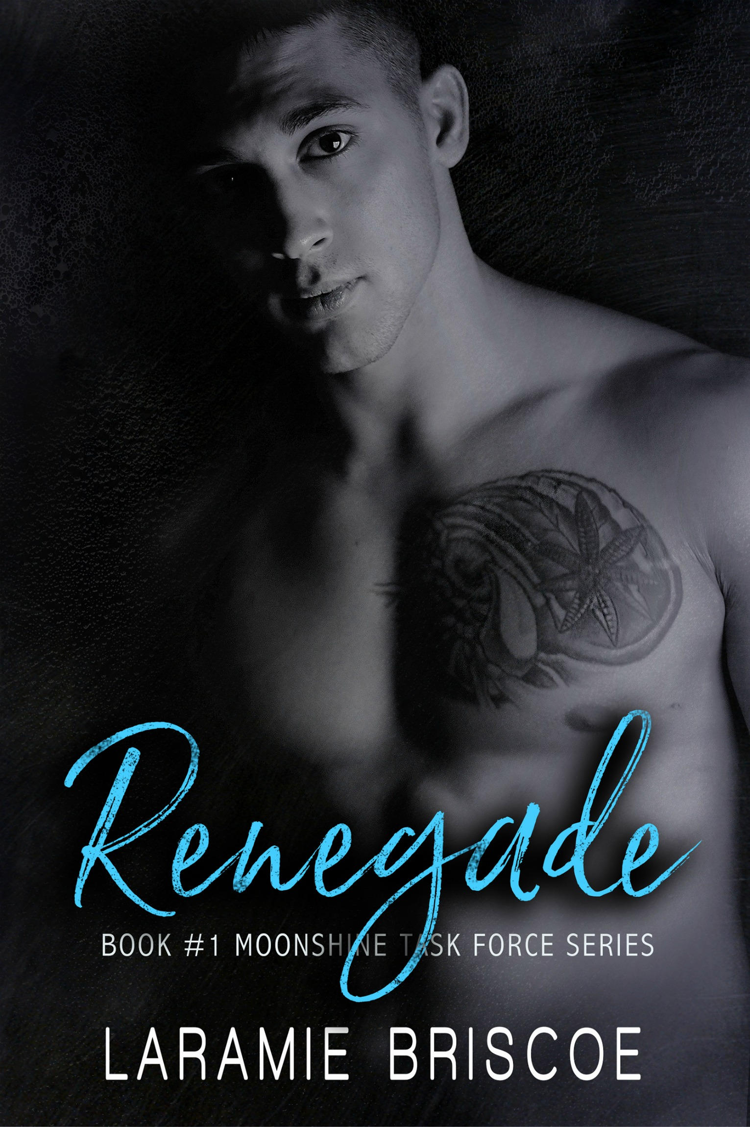Release Day Blitz & Giveaway: Renegade (Moonshine Task Force #1) by Laramie Briscoe