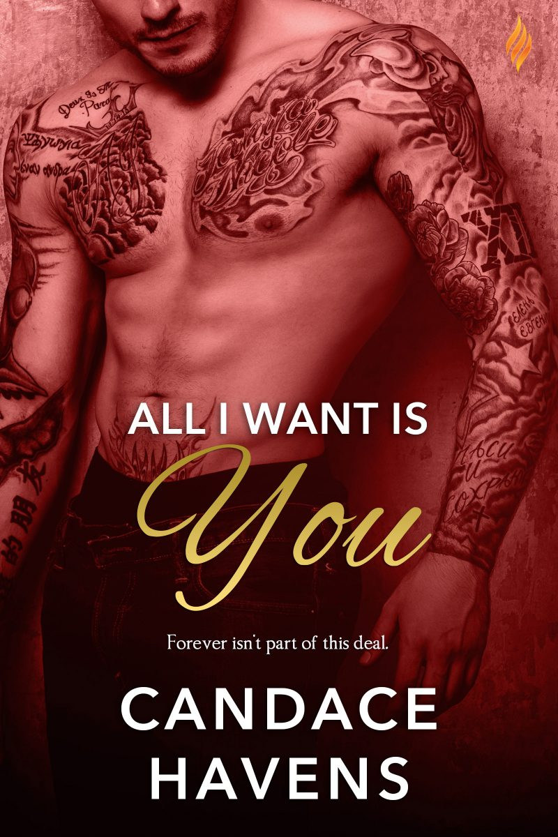 Release Day Blitz: All I Want Is You by Candace Havens