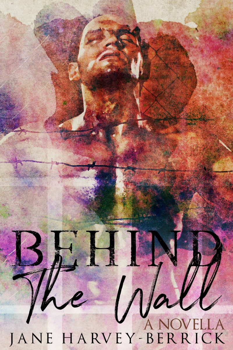 Cover Reveal: Behind The Wall by Jane Harvey-Berrick