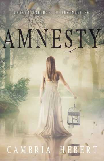 Cover Reveal: Amnesty (Amnesia #2) by Cambria Hebert