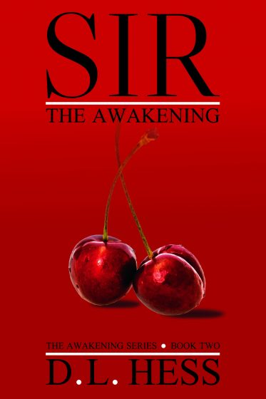 Cover Reveal: Sir: The Awakening (The Awakening #2) by DL Hess