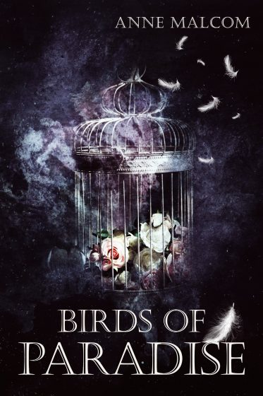 Cover Reveal: Birds of Paradise by Anne Malcom