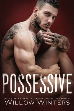 Release Day Blitz & Giveaway: Possessive by Willow Winters