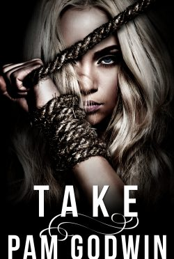 Cover Reveal: Take (Deliver #5) by Pam Godwin
