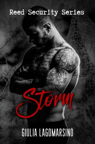 Cover Reveal: Storm (Reed Security #18) by Giulia Lagomarsino