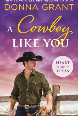 Release Day Blitz: A Cowboy Like You (Heart of Texas #4) by Donna Grant