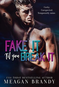 Release Day Blitz: Fake It 'Til You Break It by Meagan Brandy