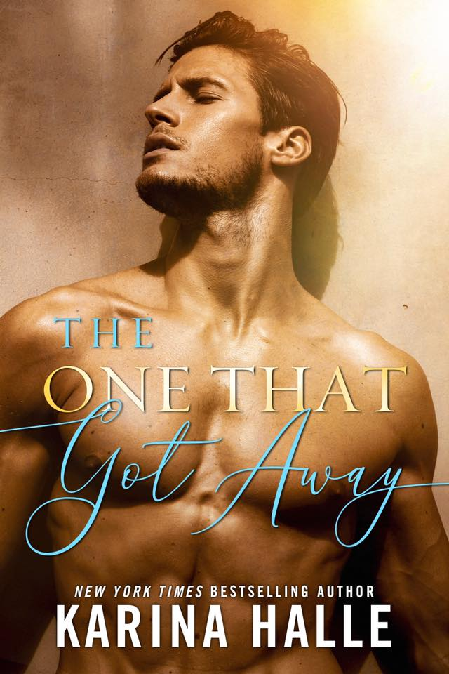 Cover Reveal: The One That Got Away by Karina Halle