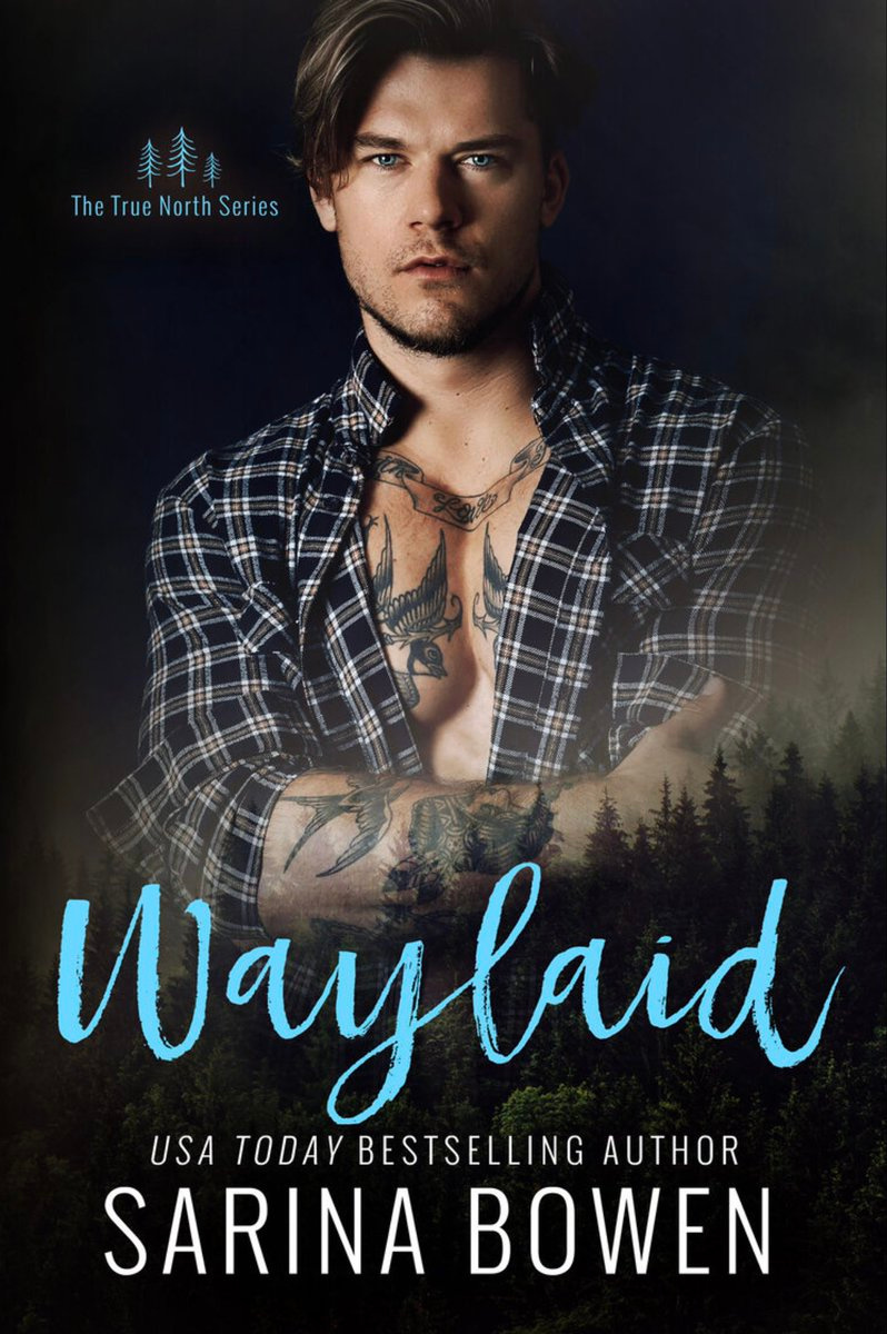 Cover Reveal: Waylaid (True North #8) by Sarina Bowen