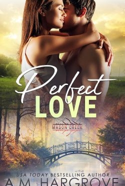 Release Day Blitz: Perfect Love (Mason Creek #3) by AM Hargrove