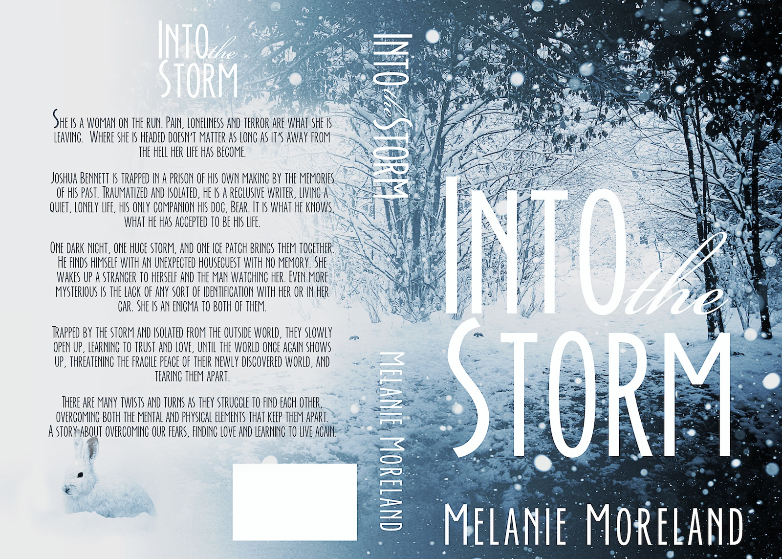 Into the Storm - paperback