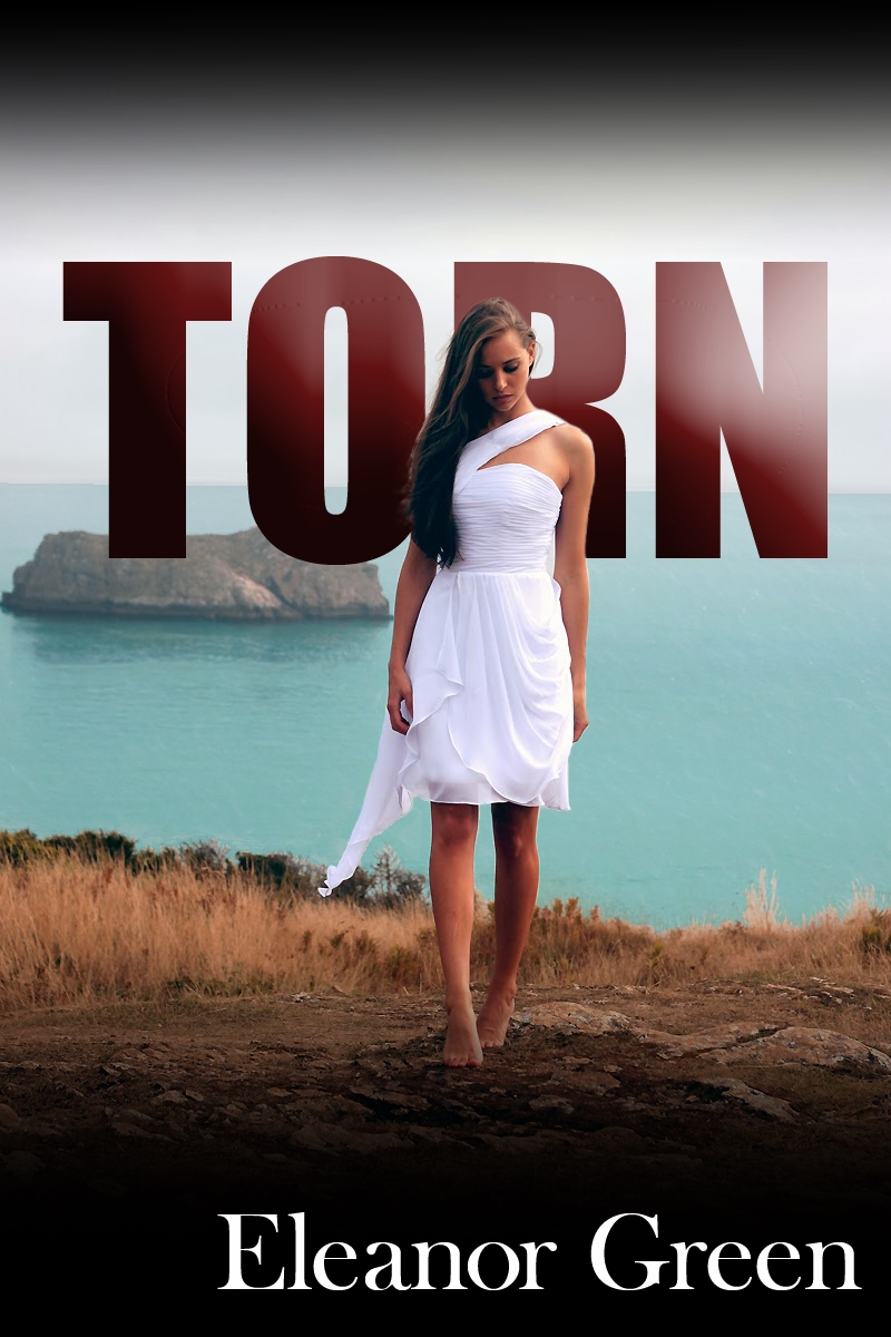 TORN cover2 (1)