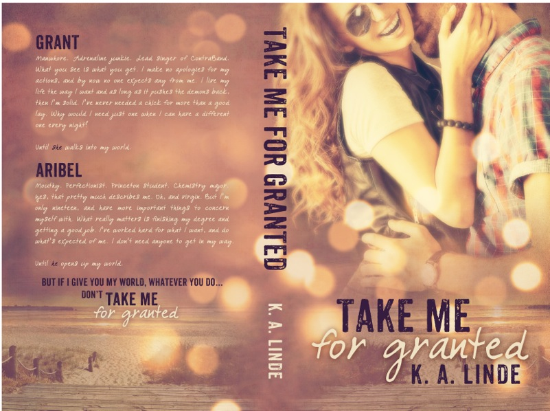 Take Me for Granted.BookCover5x8_BW_380.v5