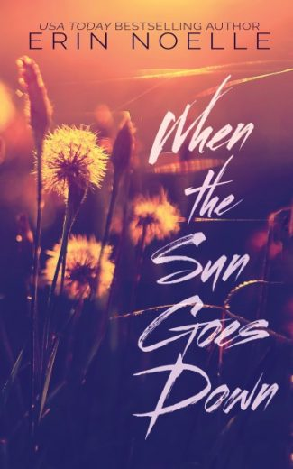 Review & Giveaway: When the Sun Goes Down by Erin Noelle
