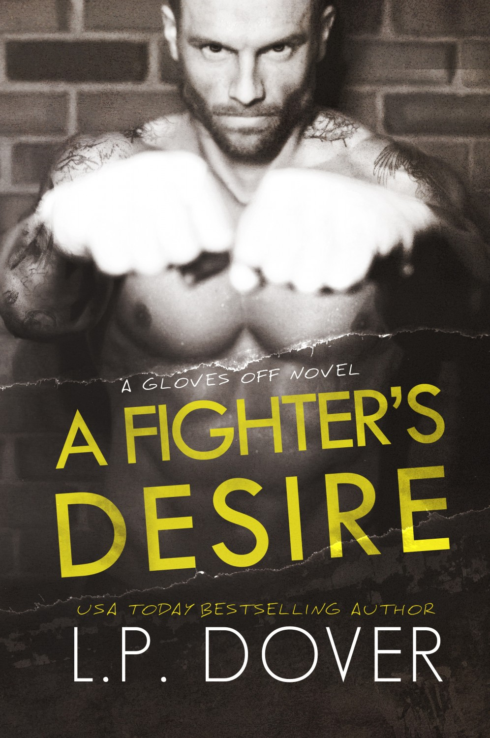 Fighters Desire_high