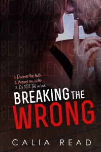 Breaking-the-Wrong-RW-cover - Sloan Brothers #2