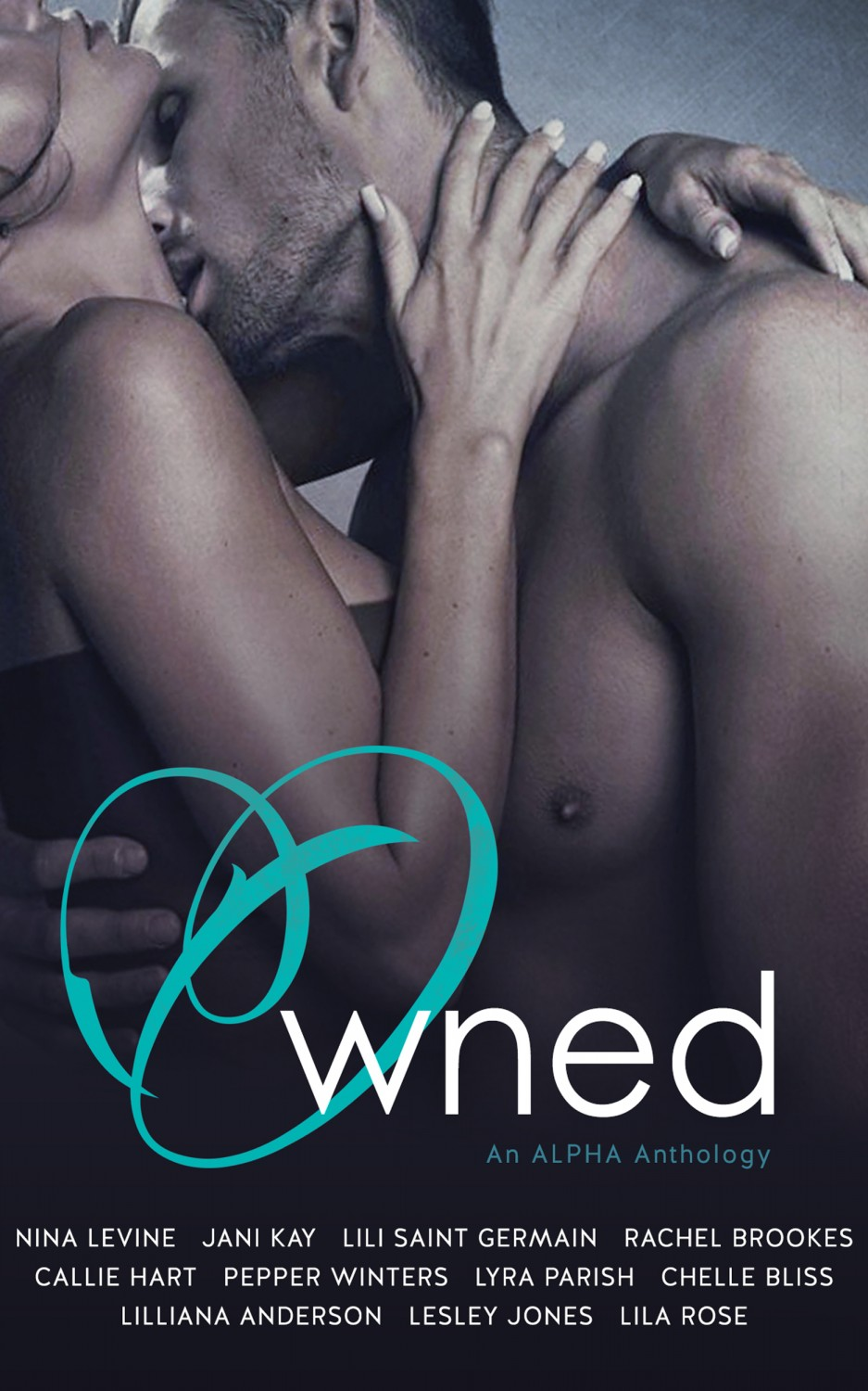OWNED ANTHOLOGY KINDLE EBOOK COVER-2