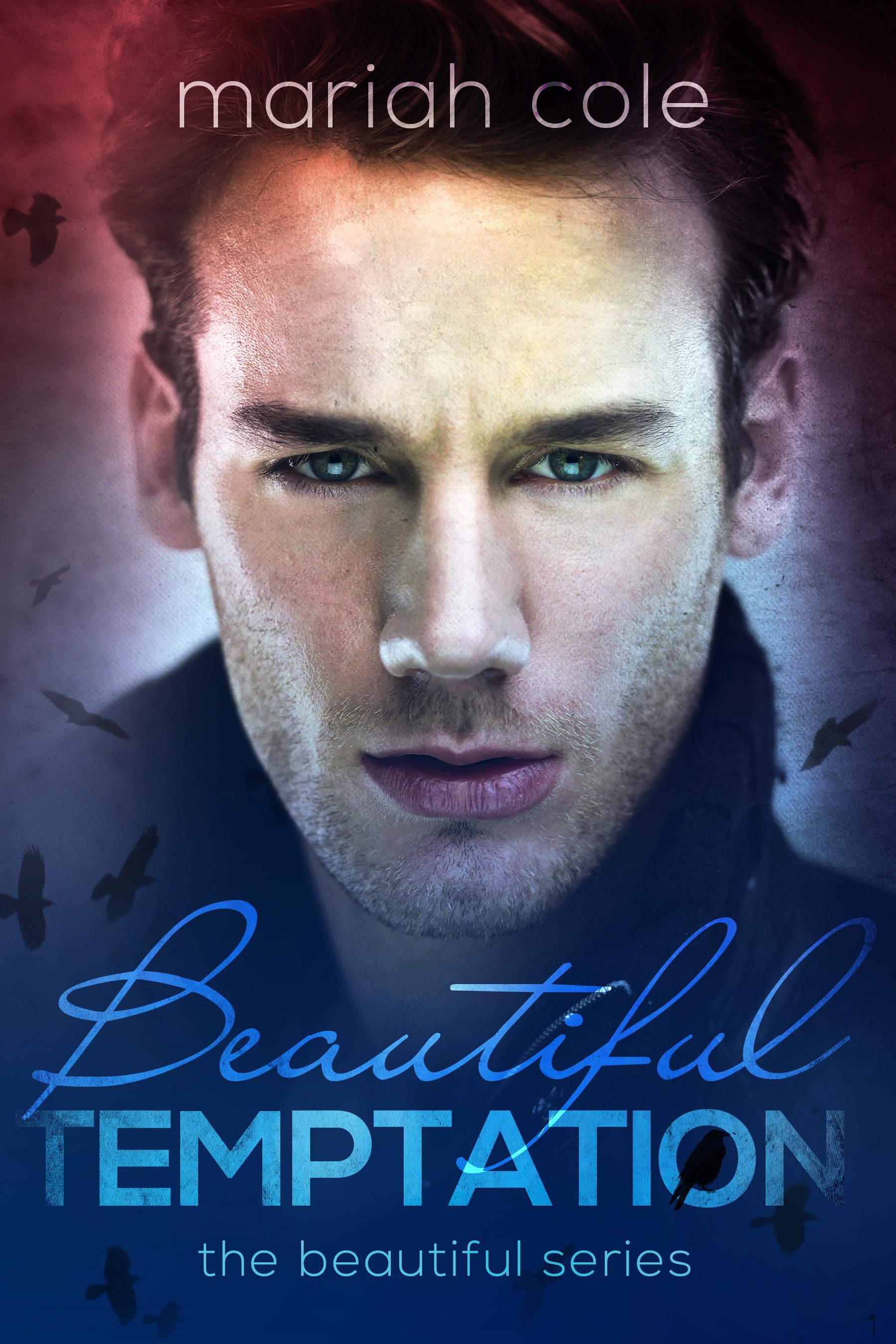 BeautifulTemptationeBook