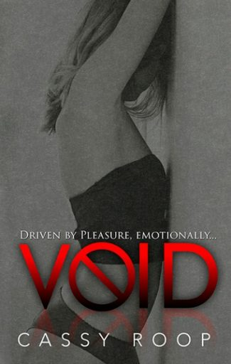 Cover Reveal & Giveaway: VOID by Cassy Roop
