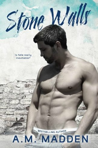 Cover Reveal: Stone Walls by A.M. Madden