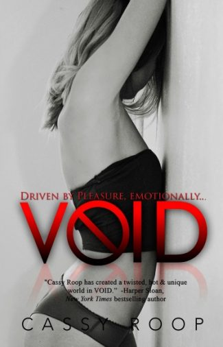 Release Day Launch: Void by Cassy Roop