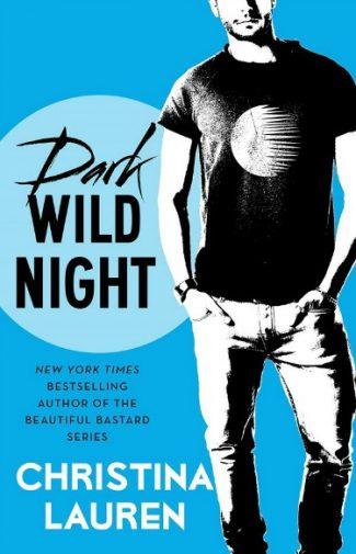 Cover Reveal: Dark Wild Night (Wild Seasons #3) by Christina Lauren