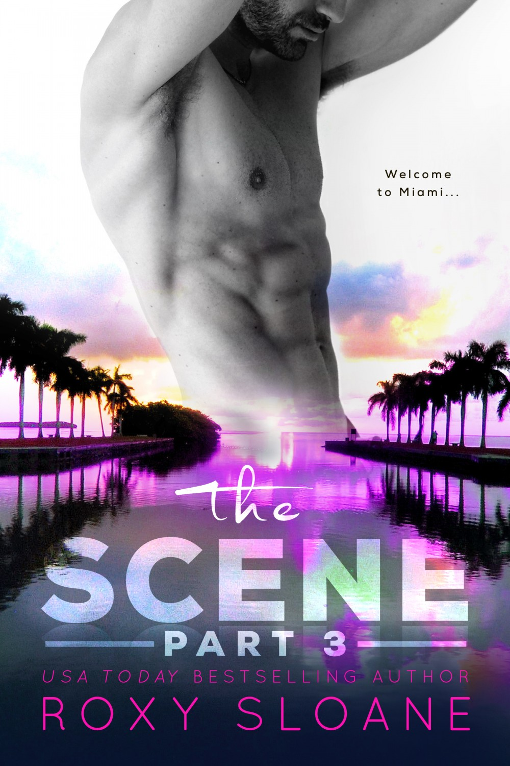 TheScene_Part3_Ecover_FINAL