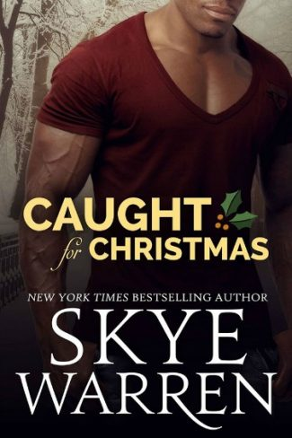 Cover Reveal: Caught for Christmas (Stripped, #3.5) by Skye Warren