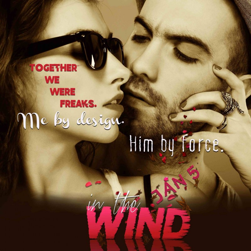 In the Wind Teaser 1