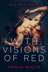 Visions of red Book 2 Cover