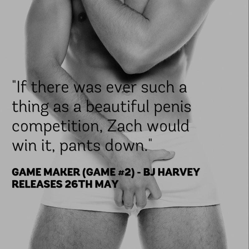 Game Maker teaser 2