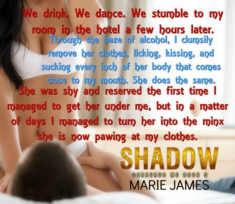 Shadow Teaser 1