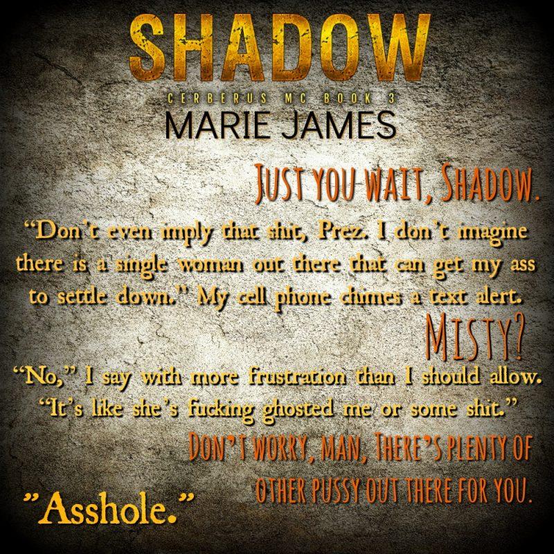 Shadow Teaser 2