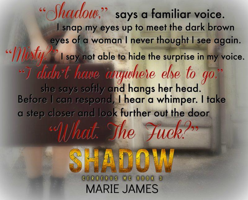 Shadow Teaser 4