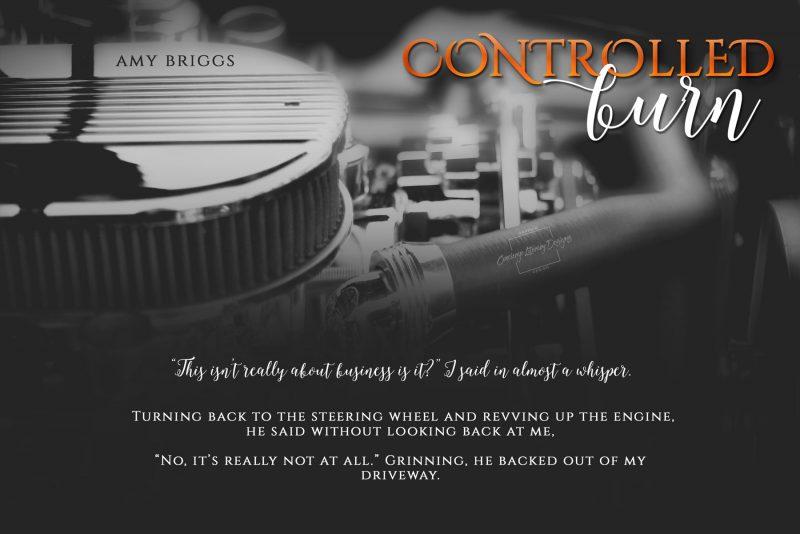 controlled-burn-teaser-6