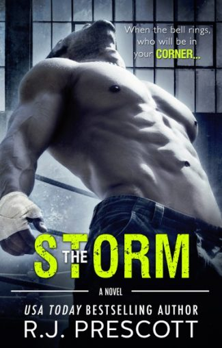 Cover Reveal & Giveaway: The Storm (The Hurricane #3) by RJ Prescott